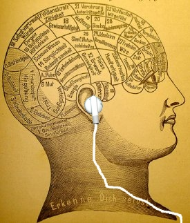 phrenology head image from WikiMedia, headphone mine